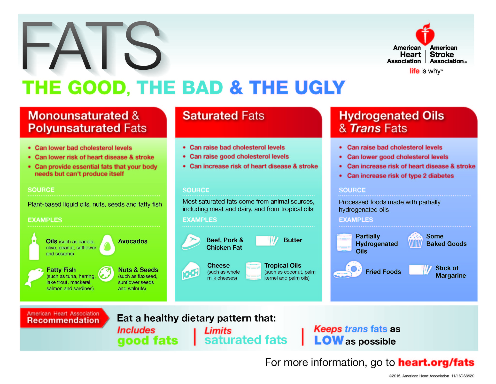 The Facts on Fat | The Good, The Bad and The Ugly