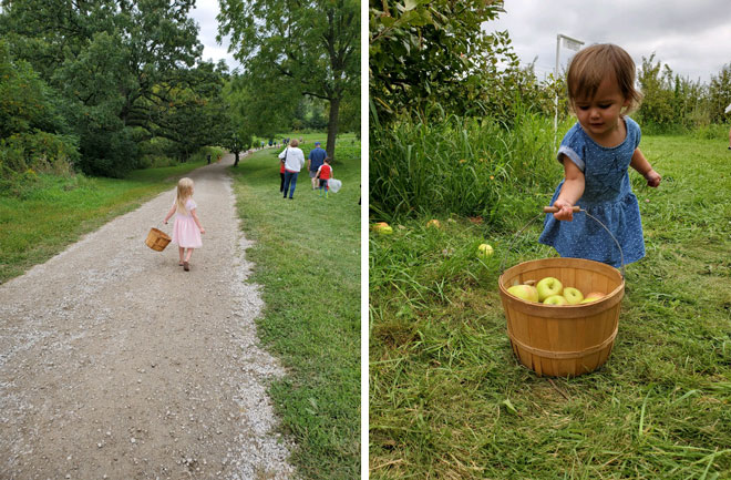 Ashley Pearson's Family Trip to Wilson's Apple Orchard